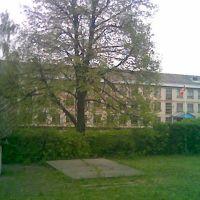 школа №1, Ульяновка