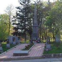 Памятник загиблим воїнам, Ульяновка