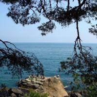 Вид на море из Воронцовского парка, Алупка