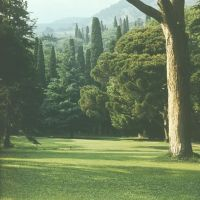 Alupka Park. Landscape. Парк Алупки. Ландшафт., Алупка
