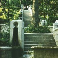 Alupka Park. Stairway. Парк Алупки. Лестница., Алупка