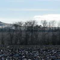 Панорама. Багерово. Вид на юг в сторону Андреевского урочища. Прогулочная дорожка, Багерово