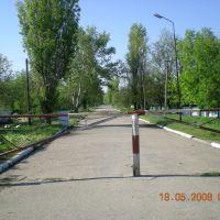 Baherove, Багерово