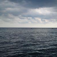 Морской простор, Гаспра