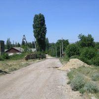 Виноградная улица, Зуя