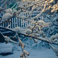 сказочная зима  the fairytale winter, Зуя