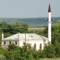 Mosque in Zuya, Зуя