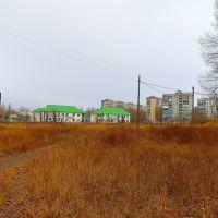 Зелёные крыши, Кировское