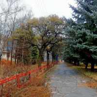 По тротуару вдоль училища, Кировское
