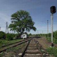 жд переезд возле трассы Шахтерск - Кировское, Кировское