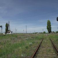 на Бункерную, Кировское
