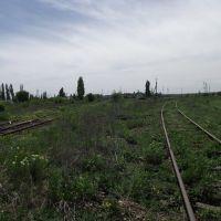 к переездам, Кировское