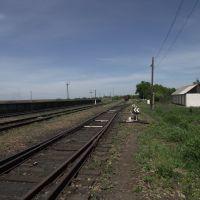 станция Бункерная, Кировское