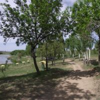 парковая зона, Кировское