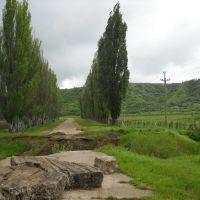 По дороге на Льговский винзавод, Красногвардейское