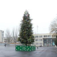 Ёлка 2011-2012, Красноперекопск