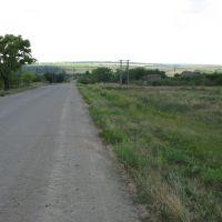 в окрестностях Ленино, Ленино