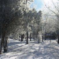 Зима 2014 - 2, Нижнегорский
