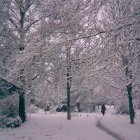 зима2, Нижнегорский