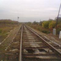 01.10.2011, Первомайское