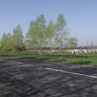 возле кладбища, Первомайское