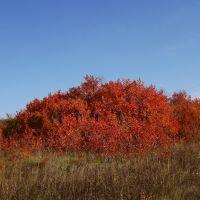 Осенняя шапка, Первомайское