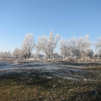 Winter in Armyansk, Армянск