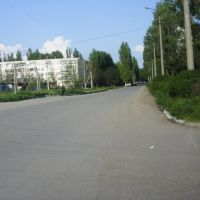 The Road from the Karkinitsky Bay, Армянск