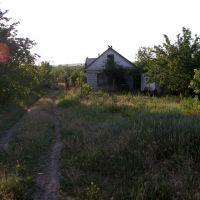 imgp7185, Алексадровск