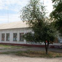 Старая школа, Алексадровск