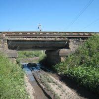 "ЖД ""мост"". A rail way ""bridge""., Алексадровск"