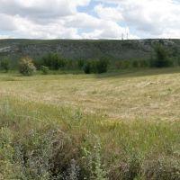 Вид на холмы со стороны Белогоровки, Белогоровка