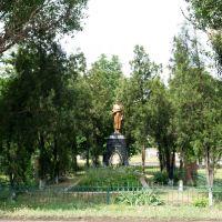Братская могила, Белое