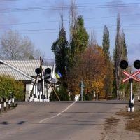 Ж.д. переезд на перегоне Белокуракино - Старобельск, Белокуракино