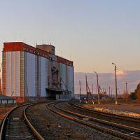 Станция Белокуракино, Белокуракино