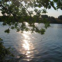 Бирюковский ставок, Бирюково