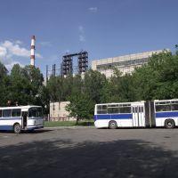 рабочие автобусы на стоянке, Бирюково