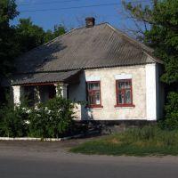 Боровская библиотека, Боровское