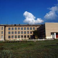 Школа в Боровском, Боровское