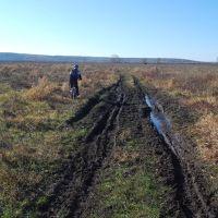 осенняя грязь, Боровское
