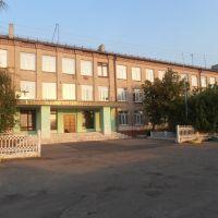 Школа, Боровское