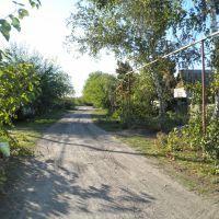 Переулок Восточный, Боровское