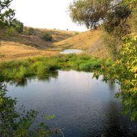 Запруды, Бугаевка