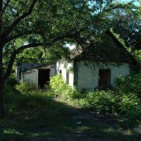 Дом затерянный в зелени. A house lost in green., Вахрушево