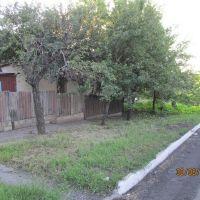 Дом моего детства..., Вергулевка
