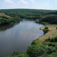 Курячанский ставок, Володарск