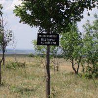 Медвежанский заказник, Володарск