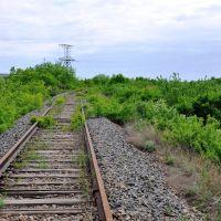 1052 км Валуйки-Должанская, Володарск