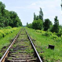919 км Валуйки-Должанская, Ворошиловград
