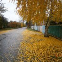 улица Кирова, Ворошиловград